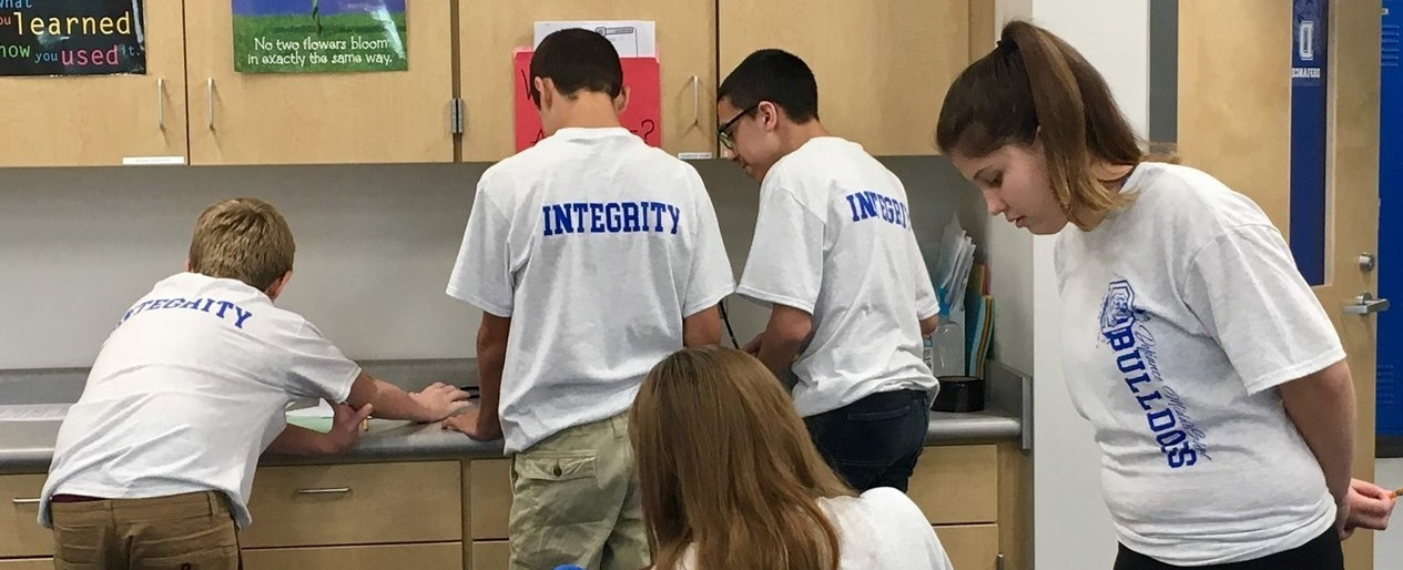 MS Team Integrity